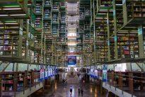 «Faire vivre la bibliothèque comme si vous y étiez»