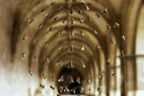 «Des artistes et des abeilles», ruche et astuces
