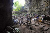 «Homo luzonensis», un petit homme des Philippines qui vient de loin