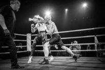 Bare knuckle boxing: la castagne sansprendre degants