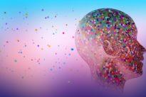 Au-delà d'une vision confinée du cerveau humain